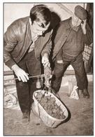 RIEZ . MARCHE AUX TRUFFES . Photo Pierre RICOU . Provence à Découvrir  N° 154-3021 - Autres Communes