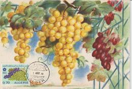 Algérie Carte Maximum Fruits 1970 Raisins 516 - Algérie (1962-...)