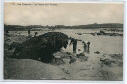 50 ILES CHAUSEY Carte RARE Les Parcs à Huitres Pecheurs  No 173 Edit R Du V  - 1910      D20 2019 - France