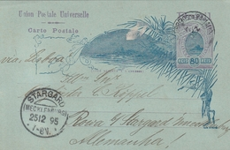Brésil Entier Postal Pour L'Allemagne 1895 - Postwaardestukken