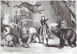 Gravure De  1865  .NICE CIRQUE   ANIMAUX LION OURS Fauve Cage   Dresseur Dressage  Menagerie Mme Schmidt - Vecchi Documenti
