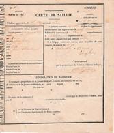 1872 - RANDON (61) - Haras Du Colombier - CARTE DE SAILLIE - - Historical Documents