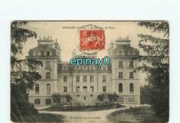 89 - SAINPUITS -château De  FLASSY Ou FLACY - Sonstige Gemeinden