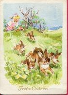 Allemagne - Carte Frohe Ostern - Joyeuses Pâques - Ecrite, Timbrée - 6639 - Pascua