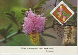 Angola Carte Maximum 1983 Fleurs 664 - Angola