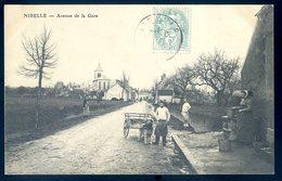 Cpa Du 45  Nibelle Avenue De La Gare -- Attelage De Chien    DEC19-33 - France