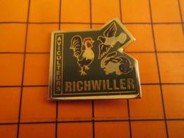 2519 PINS PIN'S / Beau Et Rare : Thème ANIMAUX / COQ PIGEON LAPIN AVICULTEURS DE RICHWILLER - Animals