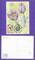 Österreich 1986  Mi.Nr. 1848 , EUROPA CEPT Natur- Und Umweltschutz - Maximum Card - First Day  2. Mai 1986 - 1986