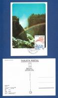 Andorra (Spanische Post) 1986  Mi.Nr. 188 , EUROPA CEPT Natur- Und Umweltschutz - Maximum Card - First Day  5 Mayo 1986 - 1986
