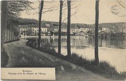 Boitsfort   *  Paysage Pris Du Chemin De L'Etang  (Bertels) - Watermael-Boitsfort - Watermaal-Bosvoorde