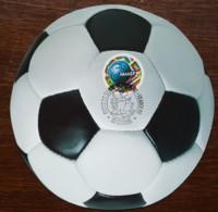 CM 1998 - YT N°3140 - COUPE DU MONDE DE FOOTBALL - ST DENIS - Cartes-Maximum
