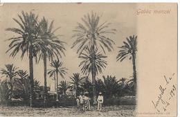 TUNISIE - GABES - Menzel - Tunesien