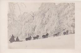 VOSGES : (88) Guerre De 14-18 Front Sur Ouest Equipe De Ravitaillement (voir Les 12 Autres Dans Ma Boutique) CARTE PHOTO - France