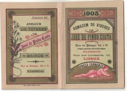 CALENDARIETTO PORTOGHESE 1905 Alimentari J.De Pinho Costa Rua Da Bitesga Lisboa 48 Pp Con Elenco Prodotti E  Prezzi - Calendriers