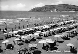 Cartolina Scauri Latina Spiaggia 1952 - Latina