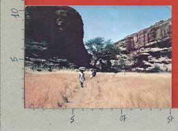 CARTOLINA VG MALI - Pays DONGON - 10 X 15 - 1975 - Mali