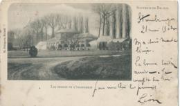 Beloeil - Souvenir De Beloeil - Les Serres Et L'Orangerie - G. Delcourt - 1903 - Beloeil