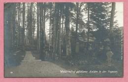 Vogesen - Hautes Vosges - Carte Photo - Waldfriedhof Gefallener Helden - Cimetière Militaire à Localiser - Guerre 14/18 - Francia