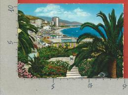 CARTOLINA VG ITALIA - ARMA DI TAGGIA (IM) - Visione Panoramica - 10 X 15 - 1964 - Imperia