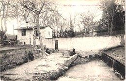 FR66 PERPIGNAN - Fau Nb 16 - Fontaine D'amour - Animée - Belle - Perpignan
