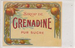 AN 784  / ETIQUETTE - SIROP DE GRENADINE PUR SUCRE N° 417 - Fruits Et Légumes