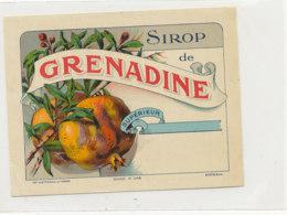 AN 787  / ETIQUETTE - SIROP DE GRENADINE    N° 248 - Fruits Et Légumes