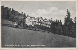 AK Riesengebirge Pension Waldheim Hotel Baude Bouda A Petzer Pec Groß Aupa Velka Upa Freiheit Marschendorf Johannisbad - Sudeten