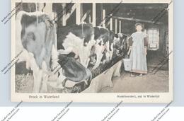 LANDWIRTSCHAFT - VIEHZUCHT, Stall Zur Winterzeit, Broek / NL - Viehzucht
