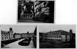 85. 3 CPSM. SAINT LAURENT SUR SEVRE.  Pensionnat St Gabriel - Classes, Grotte, Vue D'ensemble.  Scan Du Verso. - Francia
