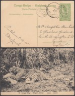 Congo Belge 1915 - Entier Postal 5 C En Carte Postale Nr. 51- Vue:  Léopard...........(DD) DC6156 - Ganzsachen