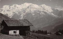 74-SALLANCHES-N°T1166-D/0243 - Sallanches