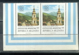 ARGENTINA - PAREJA HORIZONTAL  (#3162) - Argentina