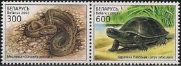 BELARUS - COMPLETE SET LOCAL FAUNA: REPTILES 2003 - MNH - Reptiles & Batraciens