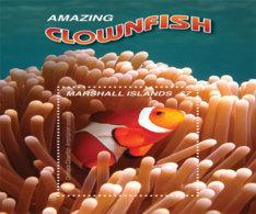 Marshall  Islands  2019  Fauna  Clownfish  I201903 - Marshall Islands