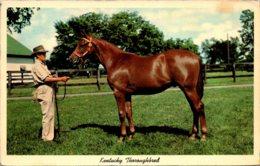Kentucky Lexington Keeneland Race Course Yearling Ready For Sale 1967 - Lexington