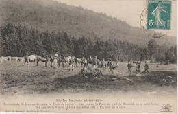 LE ROYANS PITTORESQUE FORET DE LENTE. LA FOIRE FES FAYARDS  RARE - France