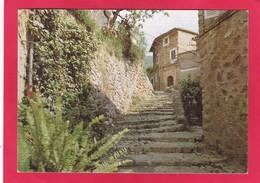 Modern Post Card Of Fornalutx,, Mallorca,Autonomous Community Of Balearic Islands, Spain,D55. - Mallorca