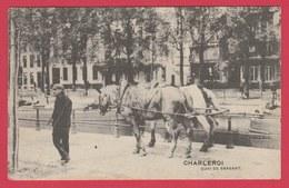 Charleroi - Quai De Brabant ... Chevaux De Hallage - 1911 ( Voir Verso ) - Charleroi