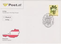 FDC 2007 - Mi 2632(2) , Freimarke : Blumen - Schneerose , SST 5010 Salzburg - 1945-.... 2a Repubblica