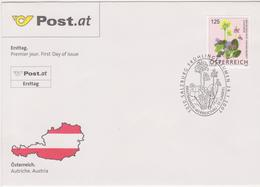 FDC 2007 - Mi 2633(1) , Freimarke : Blumen - Frühlingsblume , SST 5010 Salzburg - 1945-.... 2a Repubblica