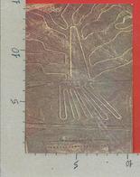 CARTOLINA NV PERU - Linee Di NAZCA - 10 X 15 - Perù