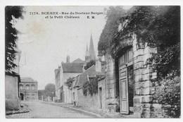 Sceaux - Rue Du Docteur Berger Et Le Petit Chateau - Sceaux