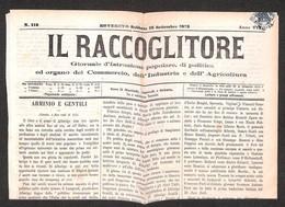 ANTICHI STATI ITALIANI - LOMBARDO VENETO - Falso Di Rovereto - Segnatasse - 1 Kreuzer (F1) Applicato Su Giornale (18.9.7 - Timbres