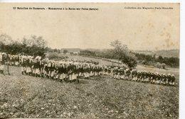 1665. CPA 73. 12è BATAILLON DE CHASSEURS. MANOEUVRES A LA ROCHE SUR FORON - Frankreich