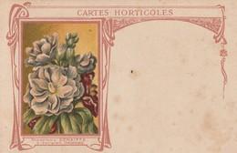 Carignan - Graineterie Denaiffe - Cartes Horticoles - Otros Municipios