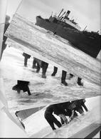 PHOTO PRESS 1959 -  FREIGHTER ANNA -CM.  24X19  Bateau  Barco  Bateaux Nave Ship Boat Cargo - Barche