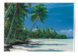 POLYNESIE---RANGIROA--archipel Des Tuamotu--voir 2 Scans - Polynésie Française