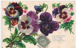 Cpa Gaufrée Fleurs - Andere