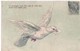 Cpa Gaufrée  Oiseaux - Fantasia