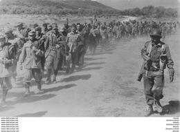 Photo Cpsm Cpm MILITARIA. Du Tchad à Tunis Prisonniers Allemands Et Italiens Avant La Prise De Bizerte - Weltkrieg 1939-45